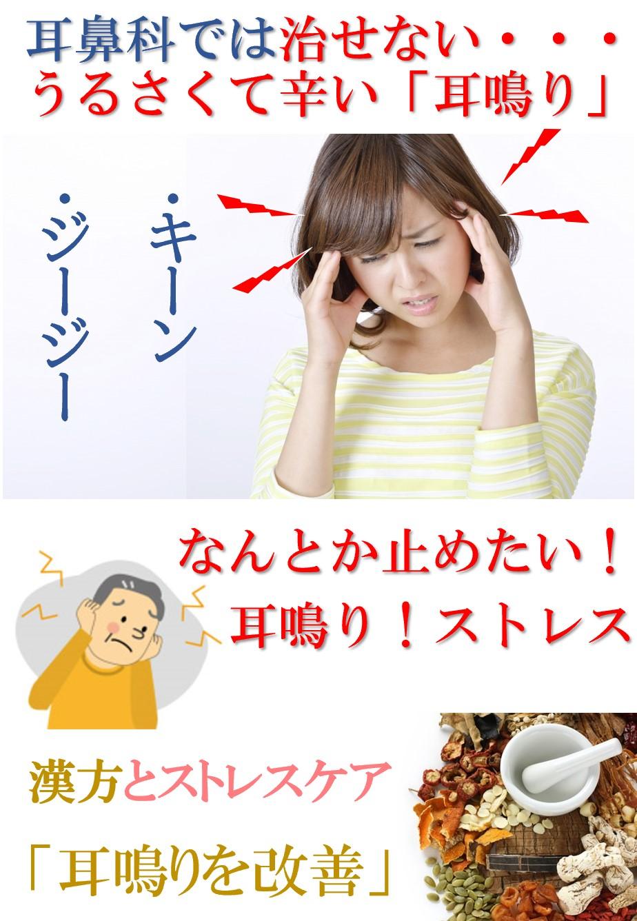 「キーン・ジージー・ゴー」などの音が鳴り響く耳鳴りは不快であり健康を崩すきっかけにもなるやっかいな症状です。