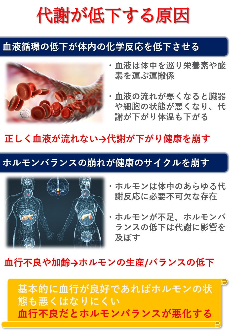 血液循環の悪化とホルモンバランスの悪化は代謝の低下に繋がる